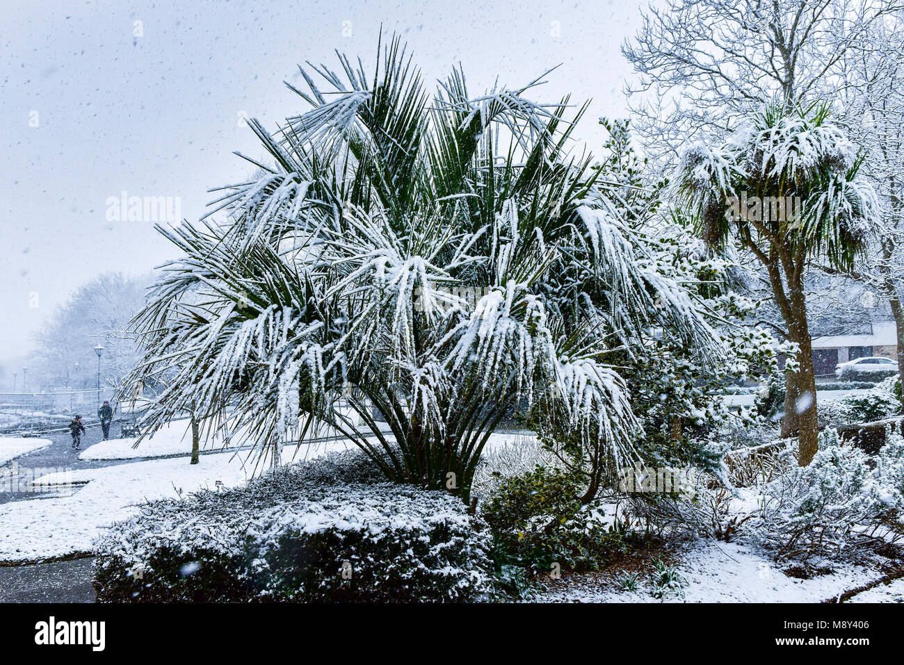 Snow fall in Trenance Park in Newquay Cornwall. - Stock Image