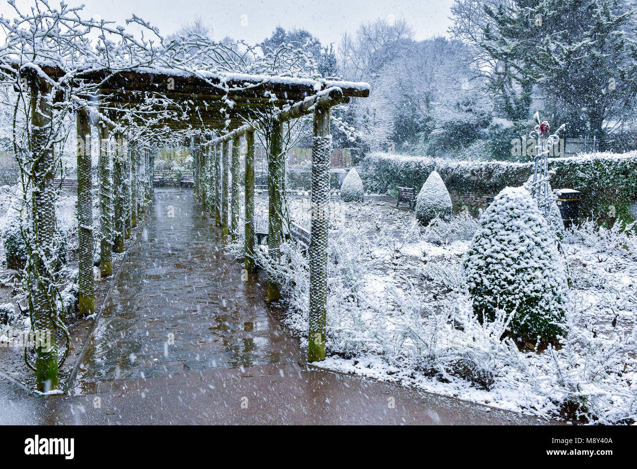 Heavy snowfall in Trenance Park in Newquay Cornwall. - Stock Image