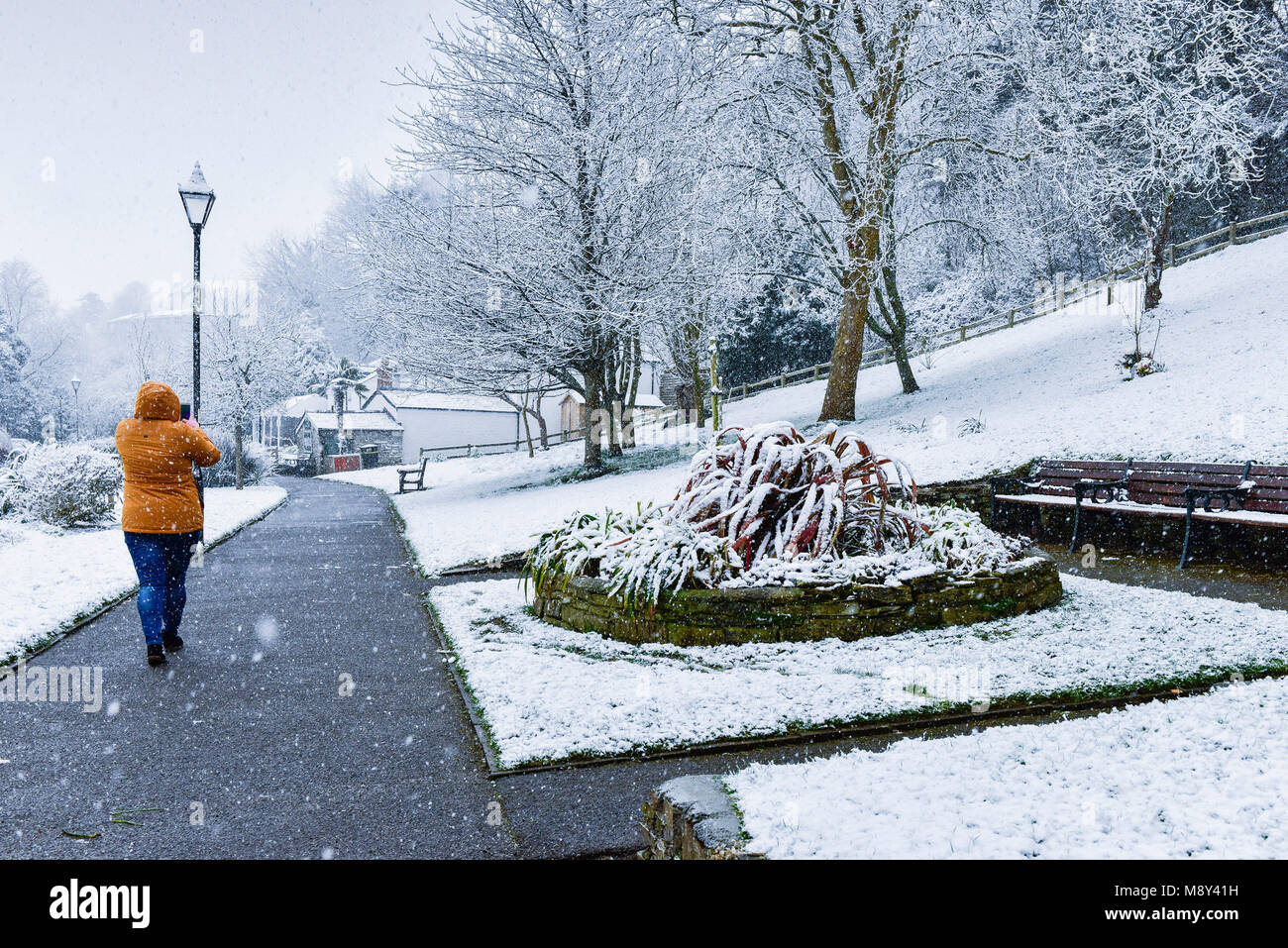 A woman walking through Trenance Gardens in a heavy snowfall Newquay Cornwall. - Stock Image