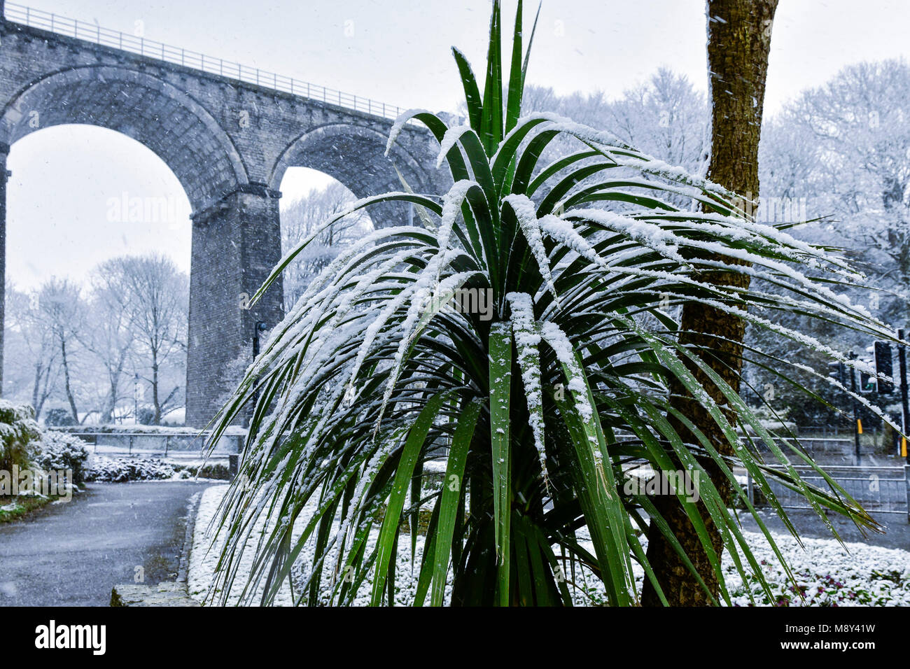 Unusal weather conditions in Cornwall with snow falling over Trenance Gardens in Newquay Cornwall. - Stock Image