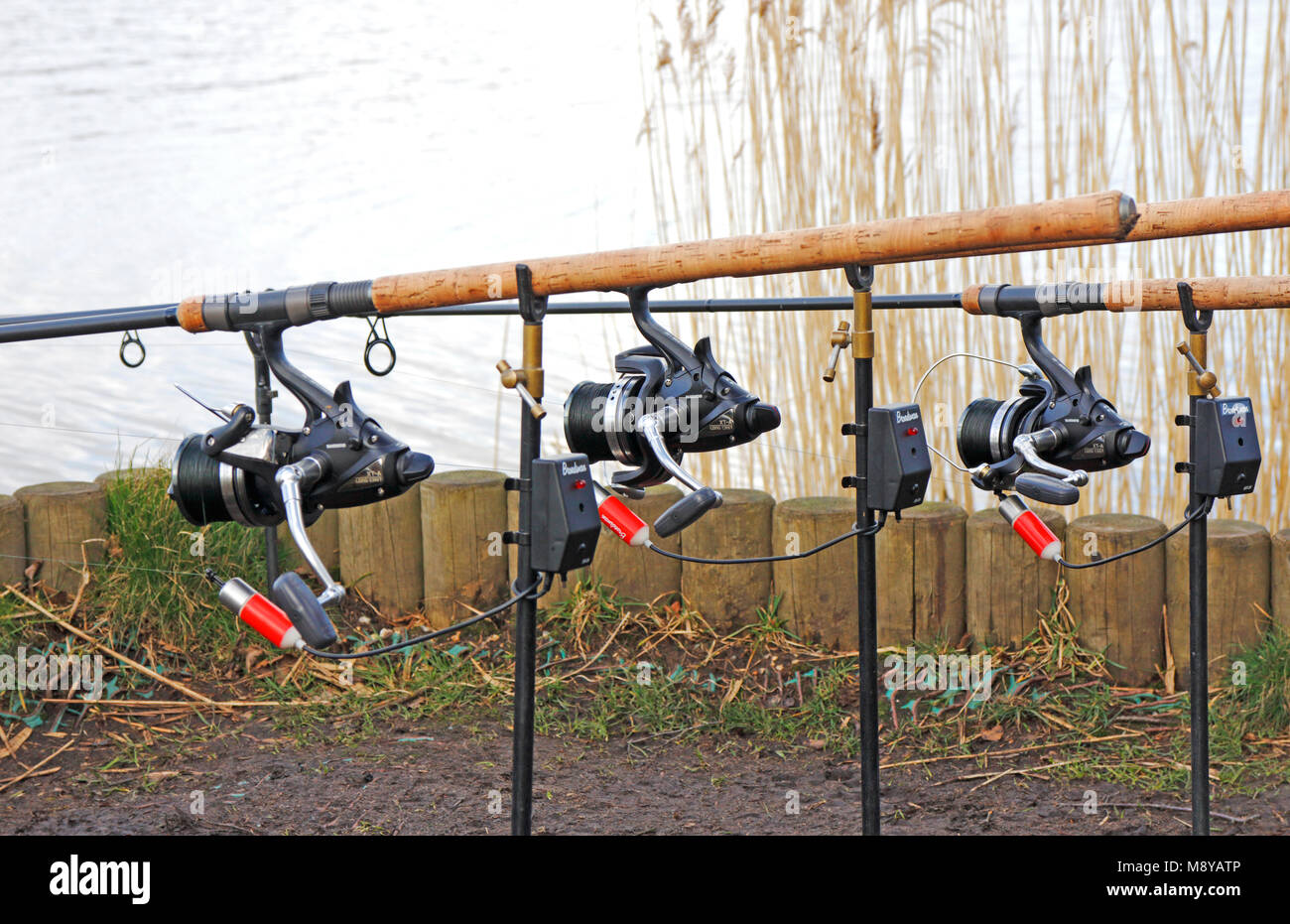 Three fishing rods with reels and bite indicators on the Norfolk Broads at Horsey, Norfolk, England, United Kingdom, - Stock Image