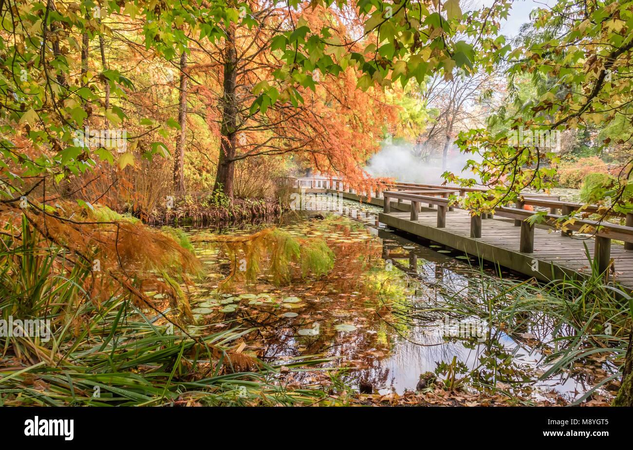 Wooden pond bridge stock photos wooden pond bridge stock for Koi pond kelowna