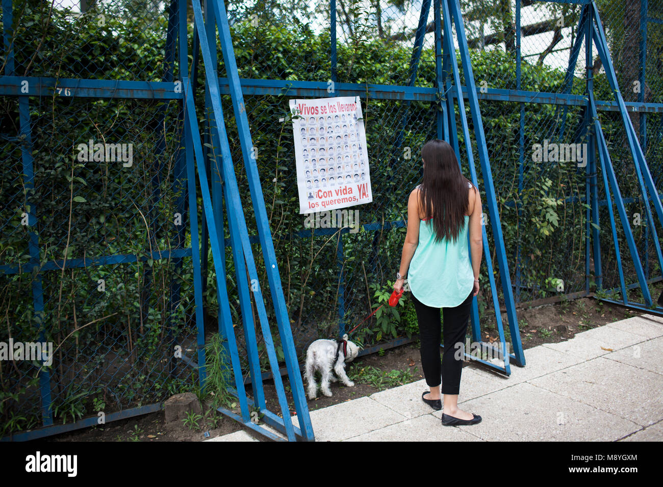 A women walks her dog past a march through Mexico City protesting for the return of 43 missing Normalista students Stock Photo