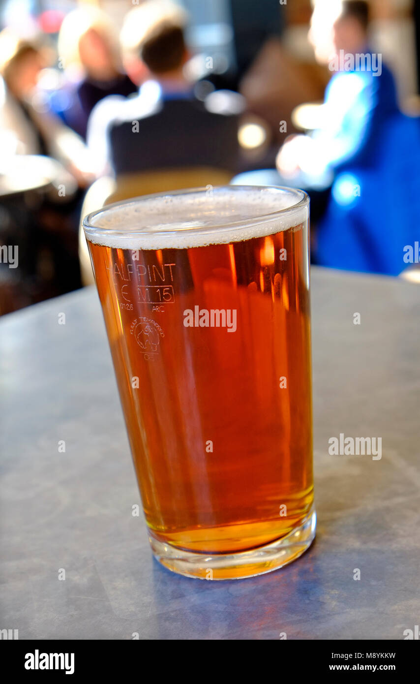half pint of beer on pub table, norwich, norfolk, england - Stock Image