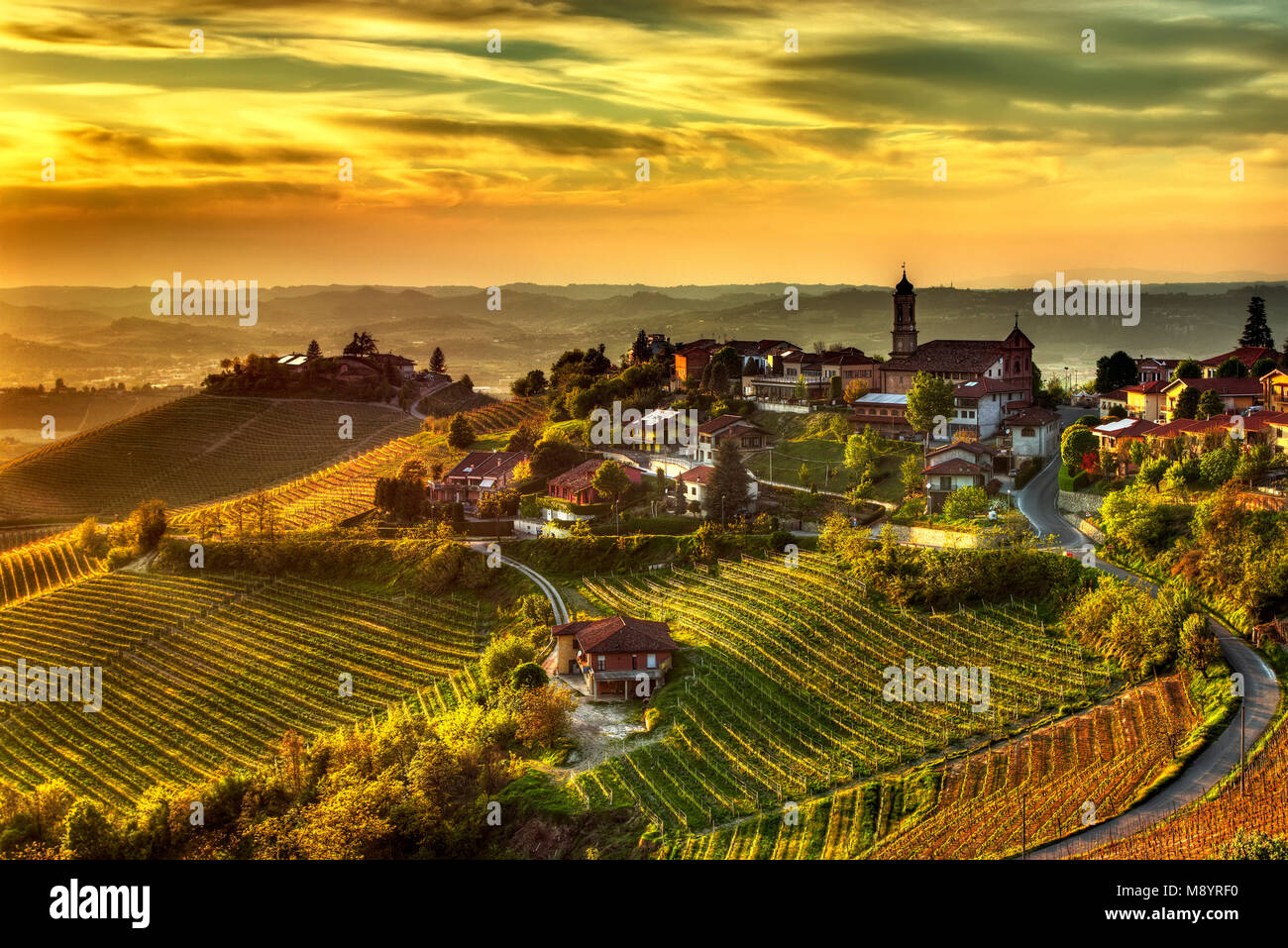 The land of wines – Treiso The village of Treiso, in the Langhe (Piedmont, Italy), in the limited production area - Stock Image