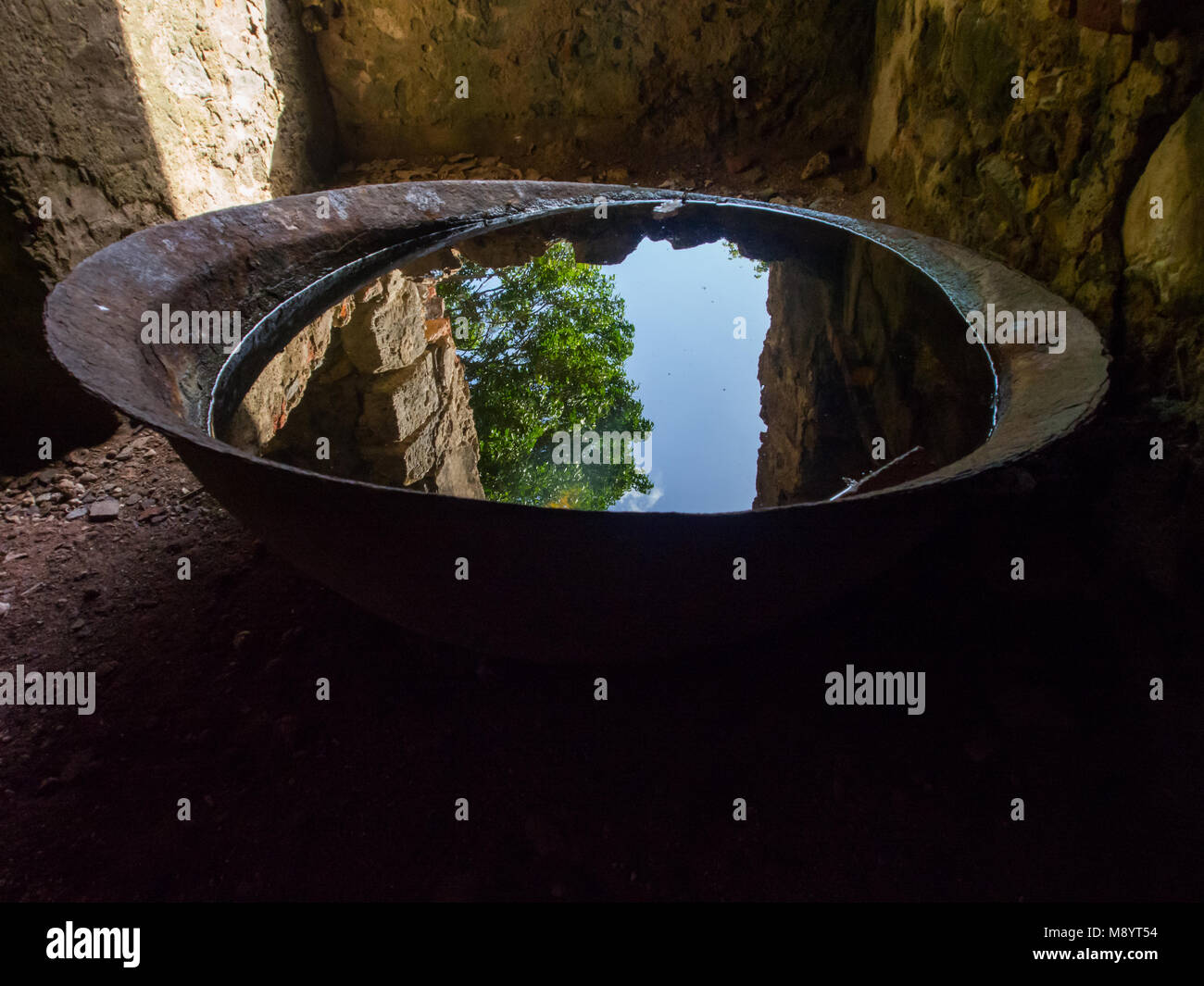 Rusted Basin Full of Water Reflecting Trees and Sky, Reef Bay Ruins, St. John - Stock Image
