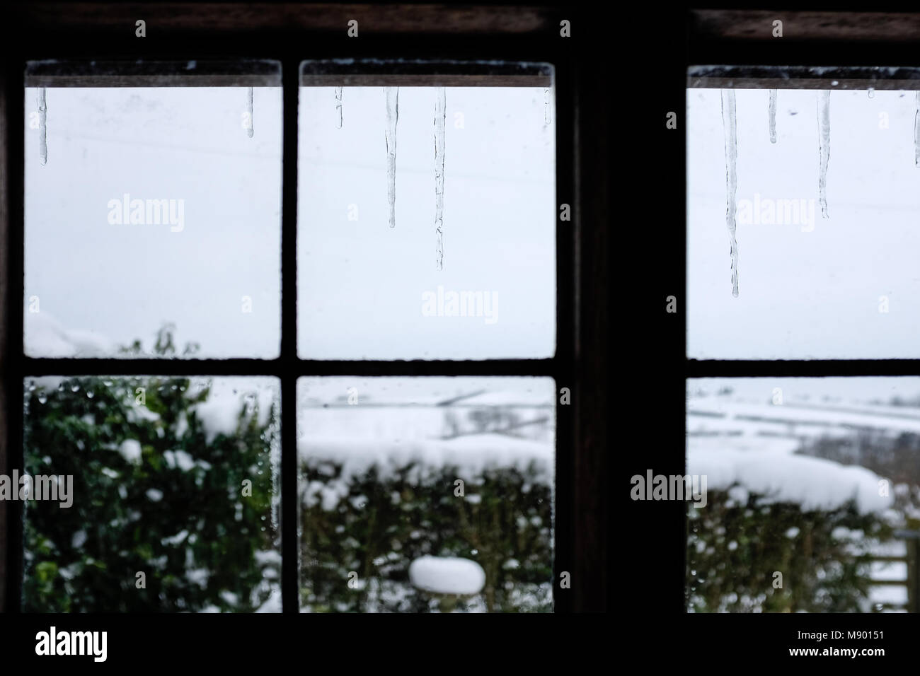 Icicles hanging outside window with snow in background Stock Photo