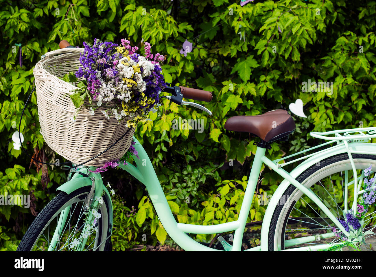 Bicycle with wicker basket of colorful dry flowers Limonium (Statice, sea-lavender, caspia or marsh-rosemary) - Stock Image