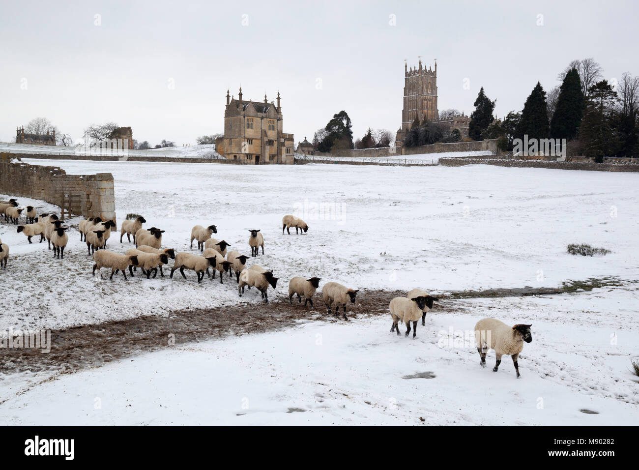 East Banqueting House of Old Campden House and St James' church with sheep in the coneygree field in winter - Stock Image