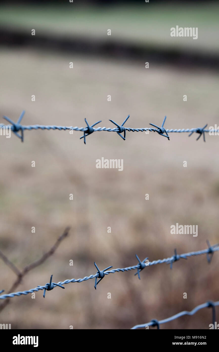 Barb wire fence. Close up of wire. - Stock Image
