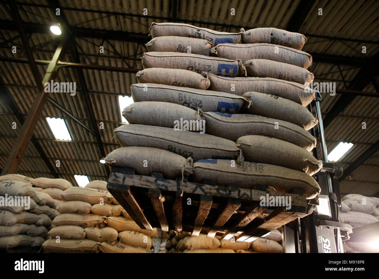 Cocoa warehouse at Abidjan port facilities, Ivory Coast. - Stock Image
