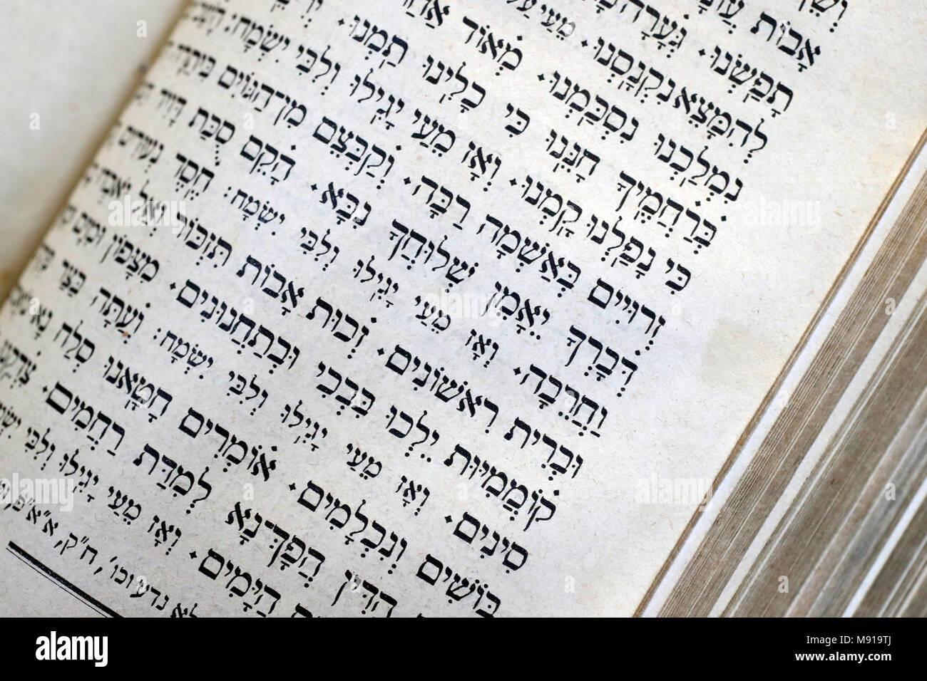 Daily Tefillah Prayer Book in Hebrew  Strasbourg  France