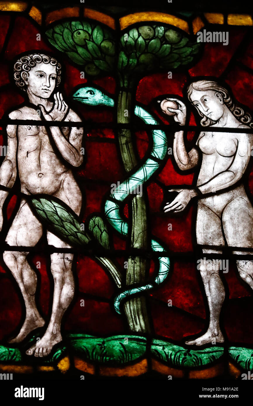 Saint-Pierre-le-Jeune Protestant Church.  Garden of Eden. Adam and Eve. The original sin. Stained glass window.  Strasbourg. France. - Stock Image