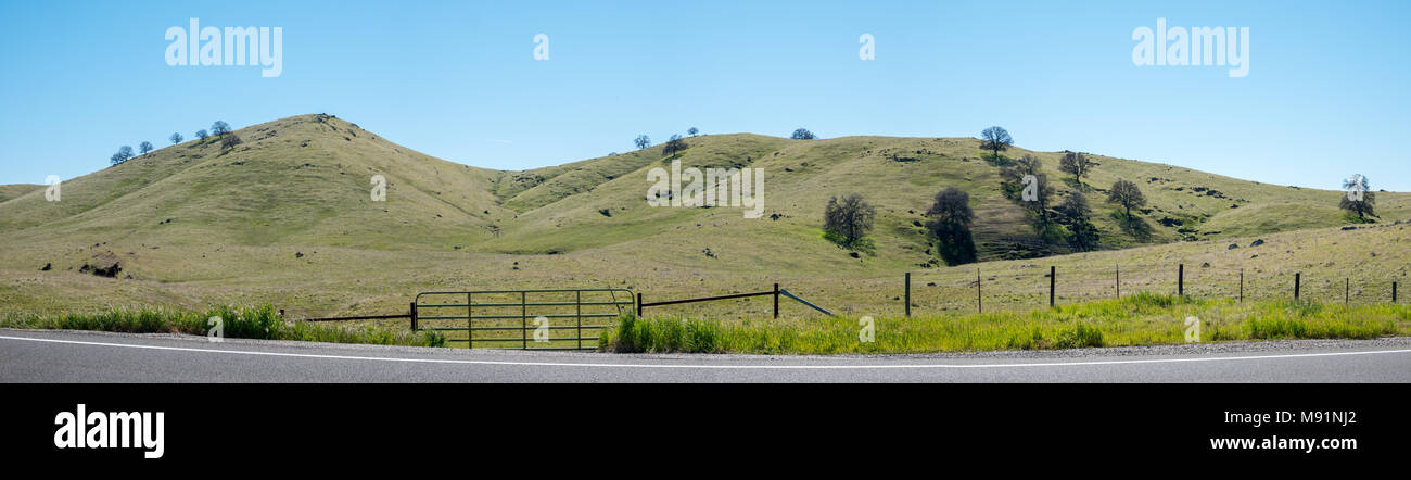Large Panorama of Green Hills with Farm Fence and Gate from the Road - Stock Image