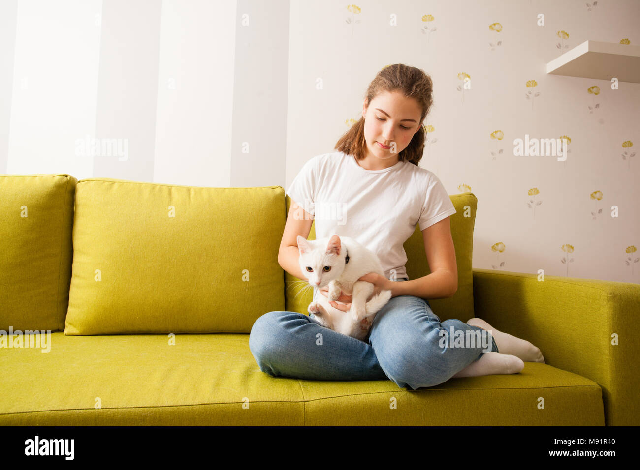 the cat is on the way down from the girl's hugs - Stock Image