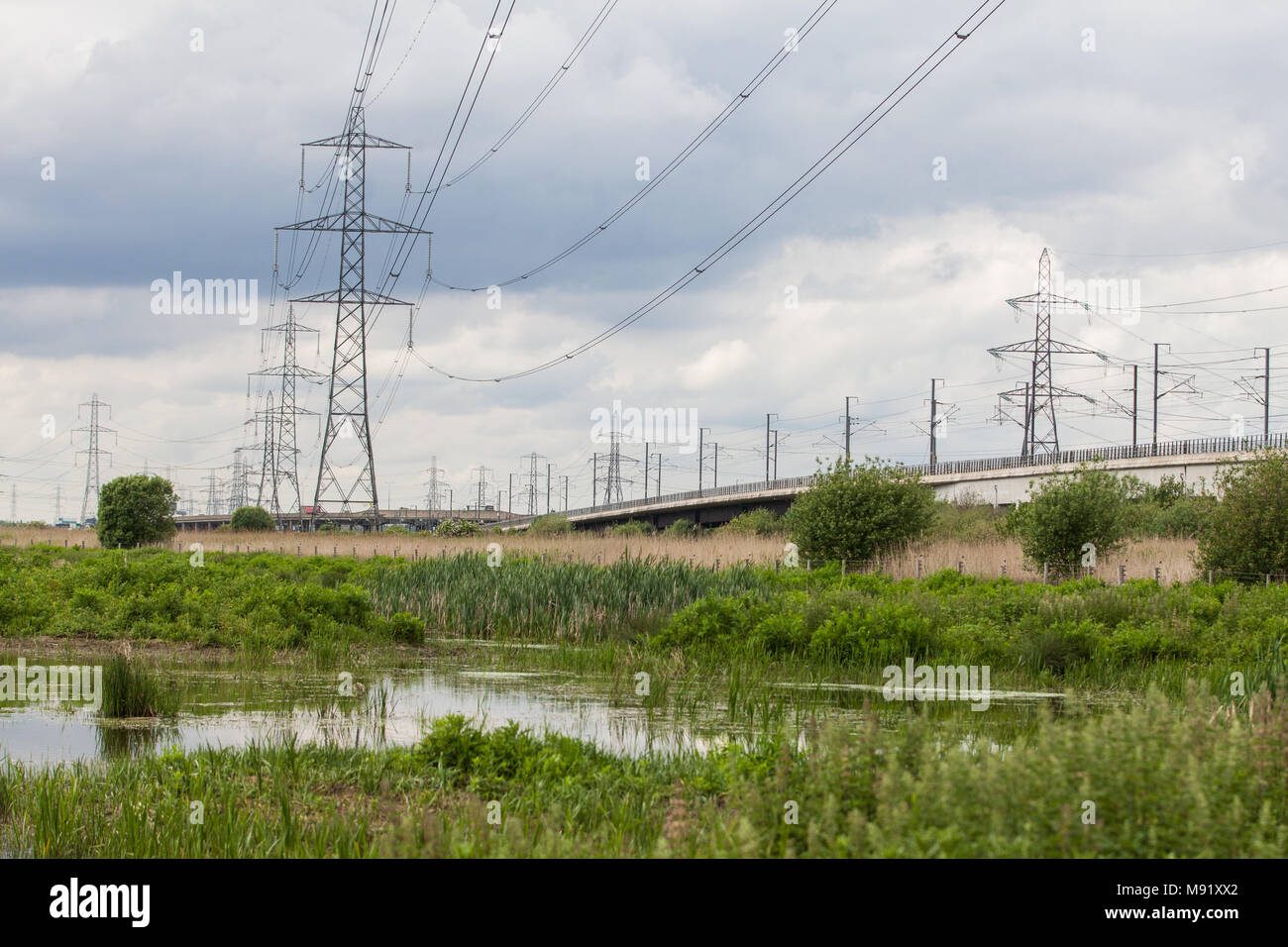 Rainham, UK. 19th May, 2017. Rainham Marshes is an area of medieval marshland on the Thames Estuary managed as a nature reserve since 2000 by the RSPB - Stock Image