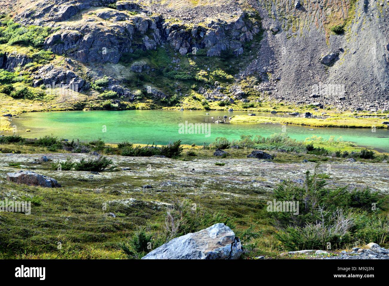 Little green lake found in a valley in a summit in the Chugach Mountains above Anchorage, Alaska on hiking trail. - Stock Image