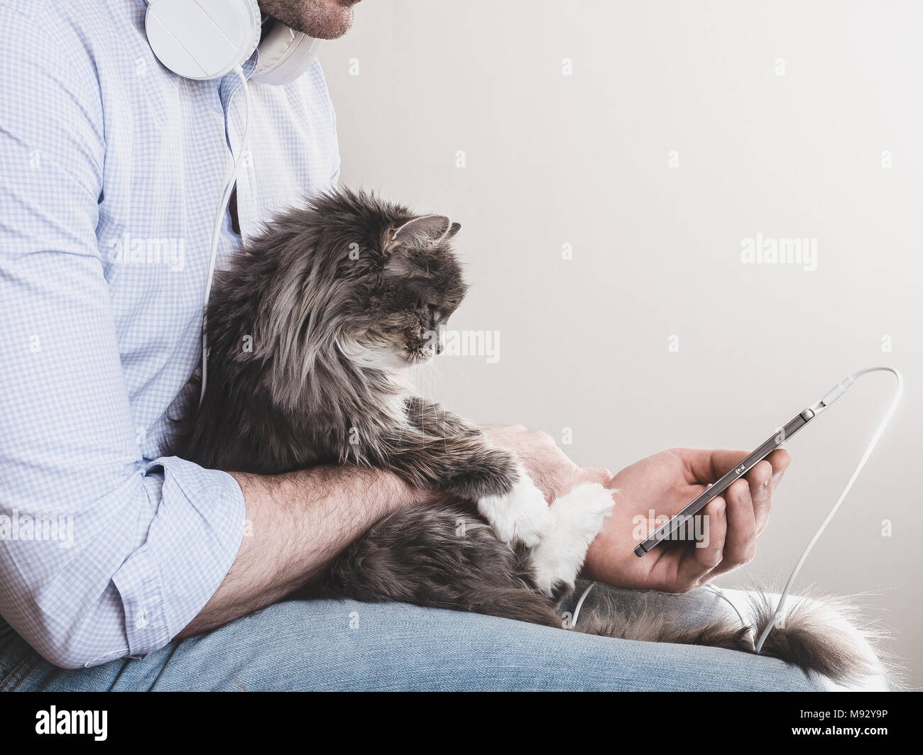 Handsome man in headphones and with a mobile phone, gently holding a cute kitten on his hands. People, pets, love and care - Stock Image