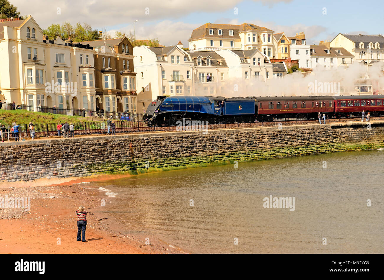 The first steam train to travel over the re-built railway at Dawlish, after the line had been destroyed during the great storms of February 2014. - Stock Image