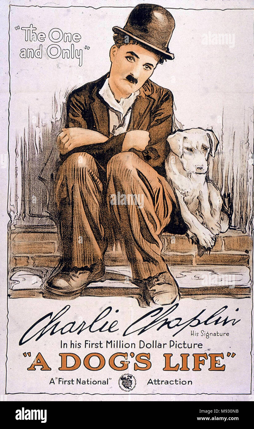 Charlie Chaplin poster for 'A Dog's Life' - Stock Image