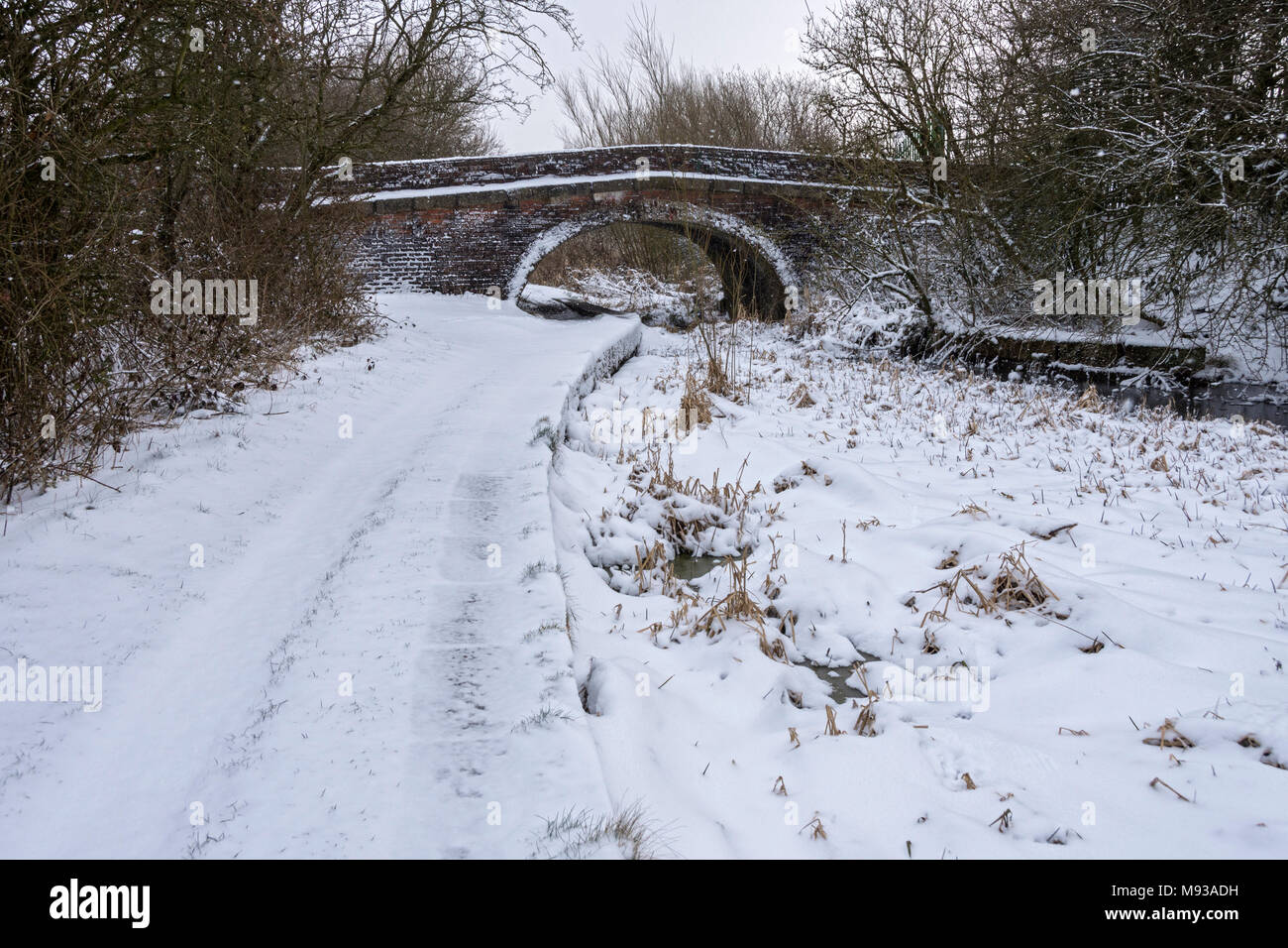 Cinderland bridge over the former canal, Hollinwood Branch Canal Nature Reserve, Tameside, Manchester, England, UK - Stock Image