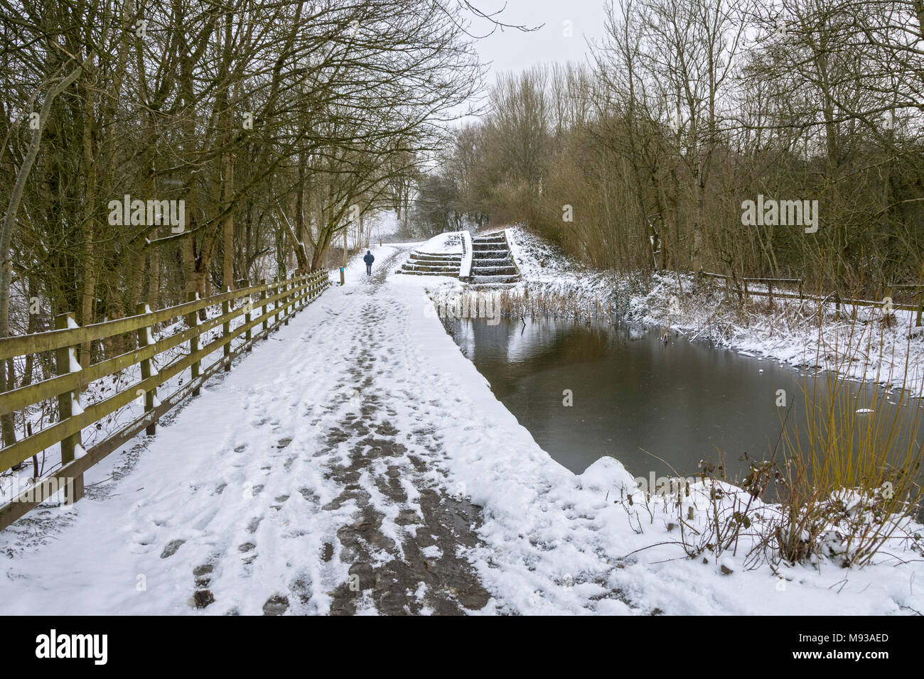 The former Hollinwood Branch Canal at Daisy Nook Country Park, Failsworth, Manchester, England, UK - Stock Image
