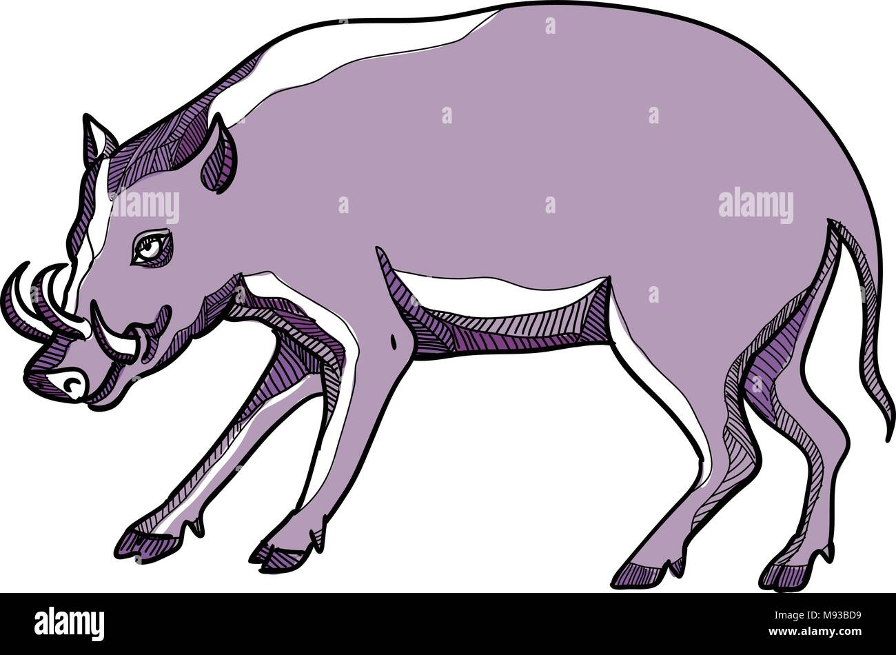 Drawing sketch style illustration of a babirusa or deer-pig, a genus, Babyrousa, in the swine family found the Indonesian islands of Sulawesi, Togian, - Stock Vector