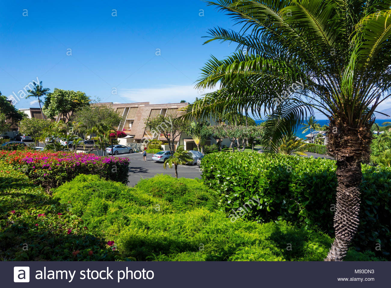 Condominium apartment resort rentals at Kihei on the island of Maui in the state of Hawaii USA Stock Photo