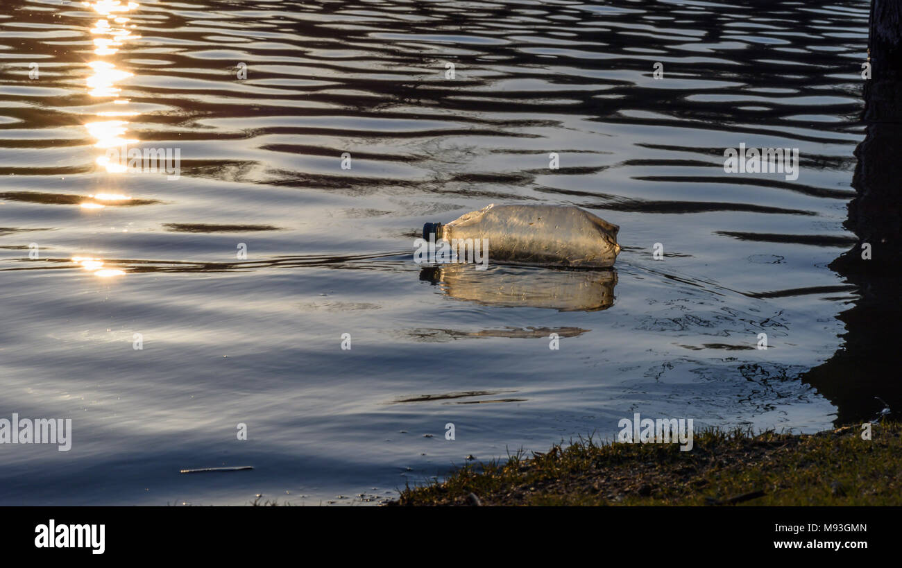 single plastic water bottle litter floating along shoreline at sunset - Stock Image