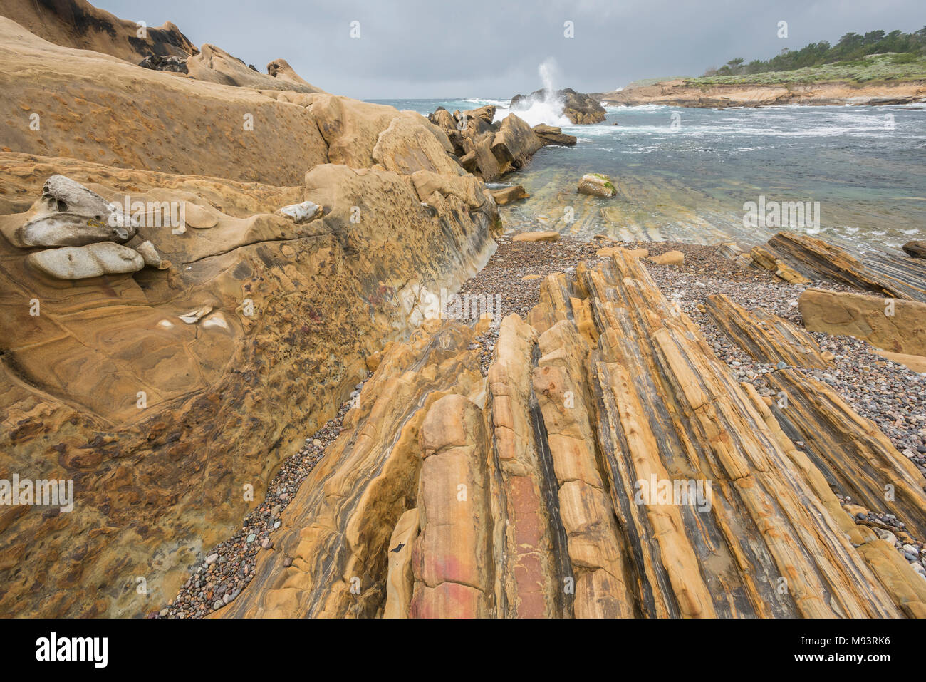 Weston beach (Carmelo formation) and eroded sedimentary rock (granodiorite), Point Lobos State Natural Reserve, CA, USA, by Dominique Braud/Dembinsky  - Stock Image