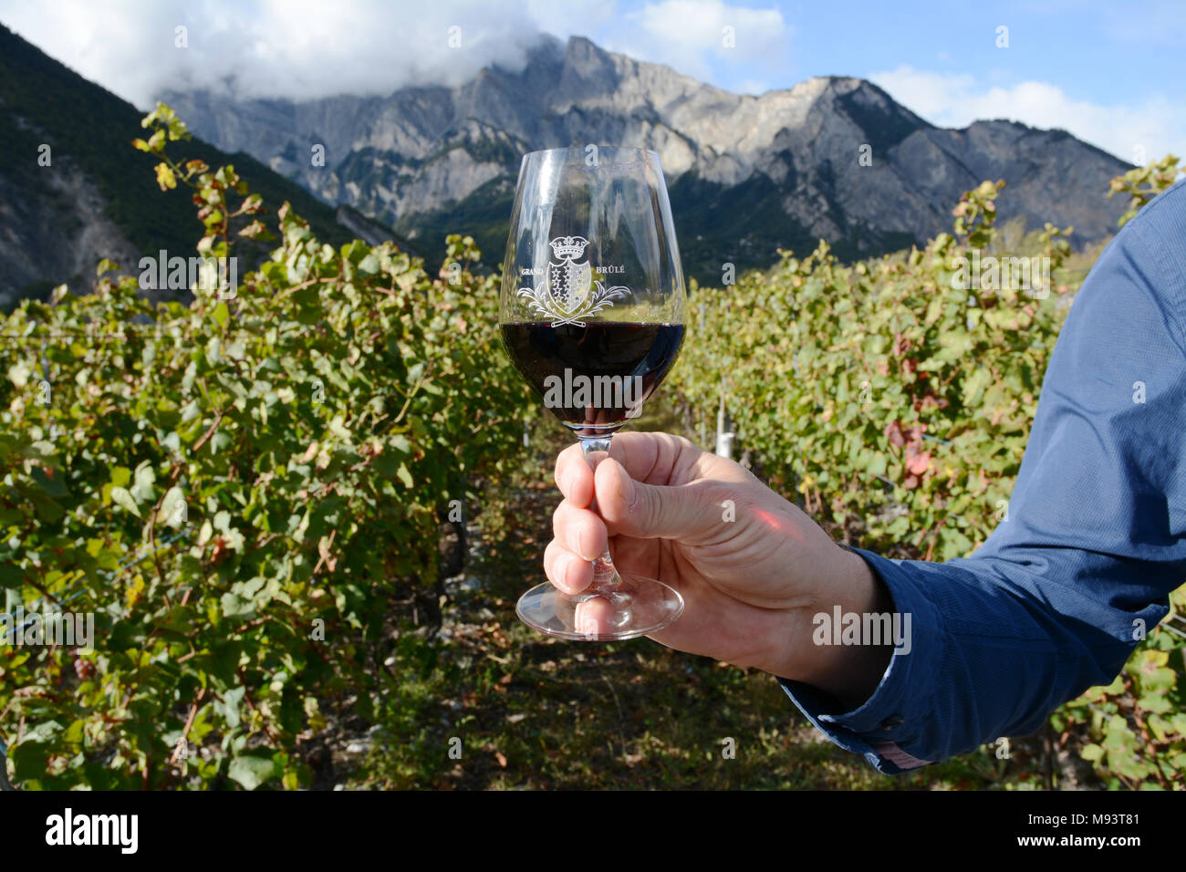A swiss winemaker in a vineyard near Chamoson holding a glass of Cornalin red wine, made of grapes grown in the Valais region of Switzerland. - Stock Image