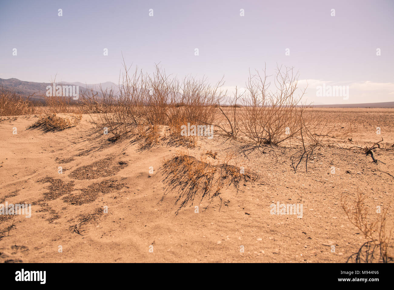 The desert of Death Valley Arizona - Stock Image