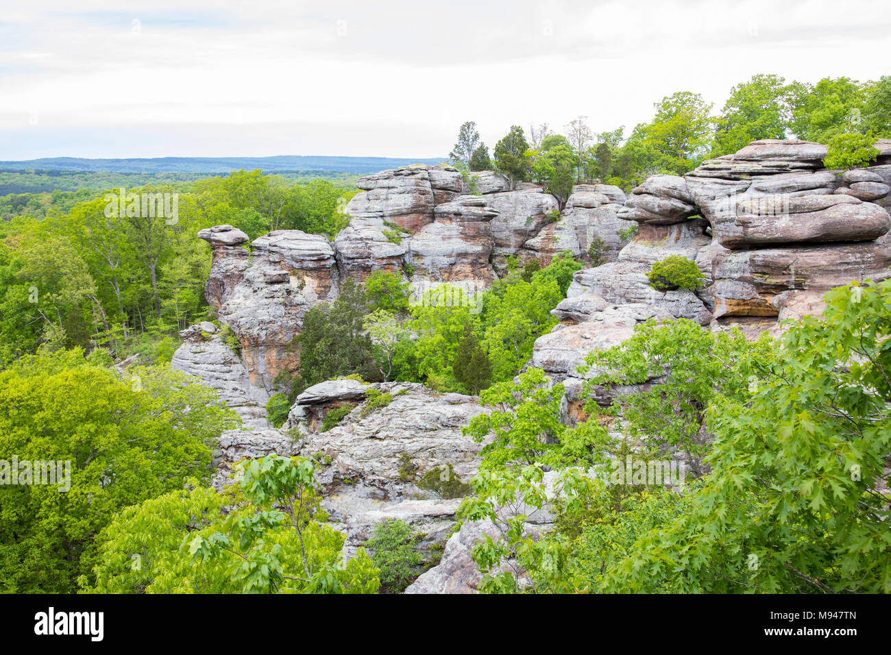 63895-14807 Camel Rock, Garden of the Gods Recreation Area Shawnee National Forest Saline Co. IL - Stock Image