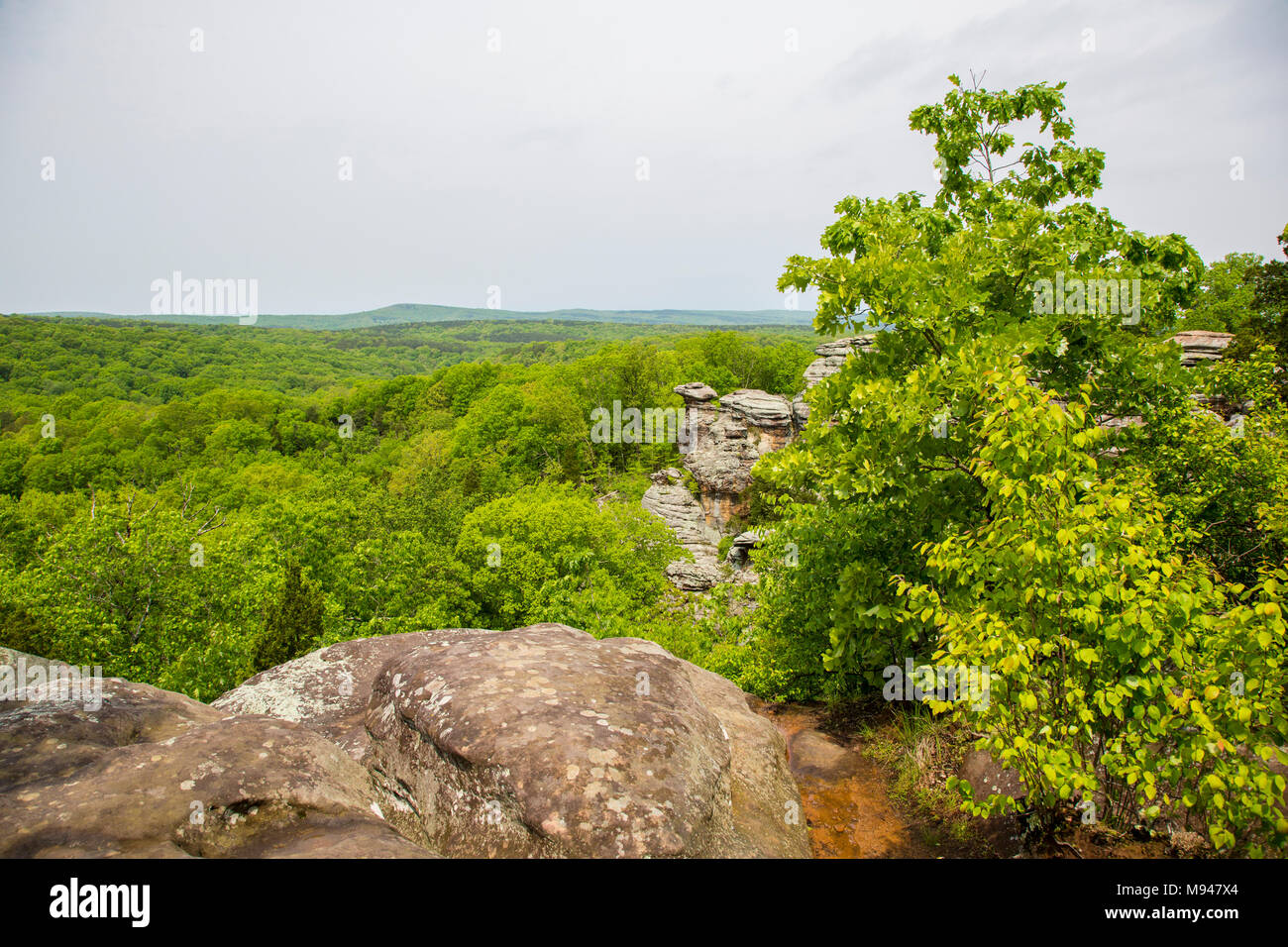 63895-14908 Camel Rock, Garden of the Gods Recreation Area Shawnee National Forest Saline Co. IL - Stock Image
