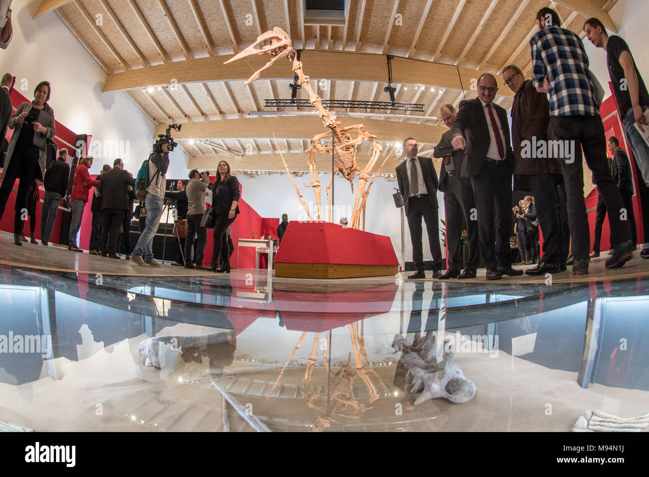 Denkendorf, Germany. 22 March 2018, The model of a huge flying dinosaur hanging in the Dinosaur Museum. The most probably biggest discovered flying dinosaur with a twelve metre wing-span and weighing half a ton is being presented on Thursday. Photo: Armin Weigel/dpa Credit: dpa picture alliance/Alamy Live News - Stock Image