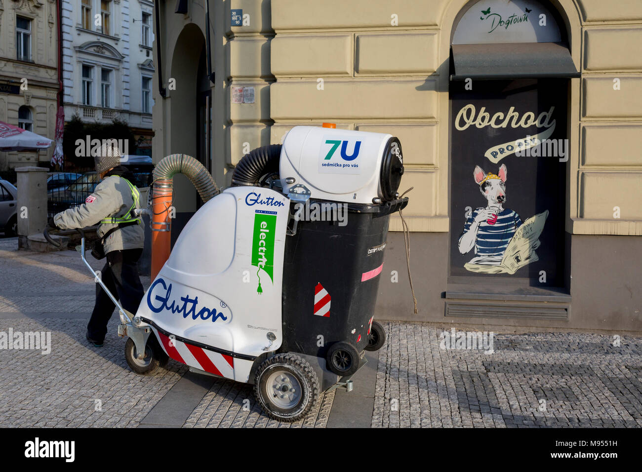 City Cleaning Jobs Auckland