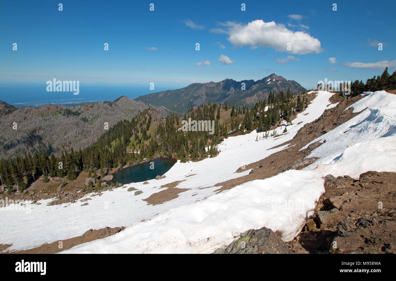 Snowfield on Hurricane Hill / Ridge in Olympic National Park in Washington state United States - Stock Image