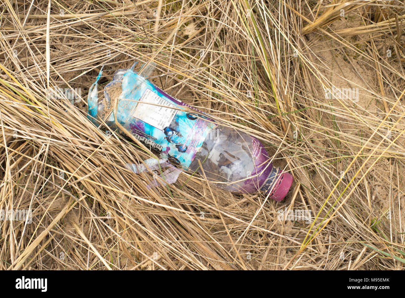 A plastic bottle discarded or thrown away - Stock Image