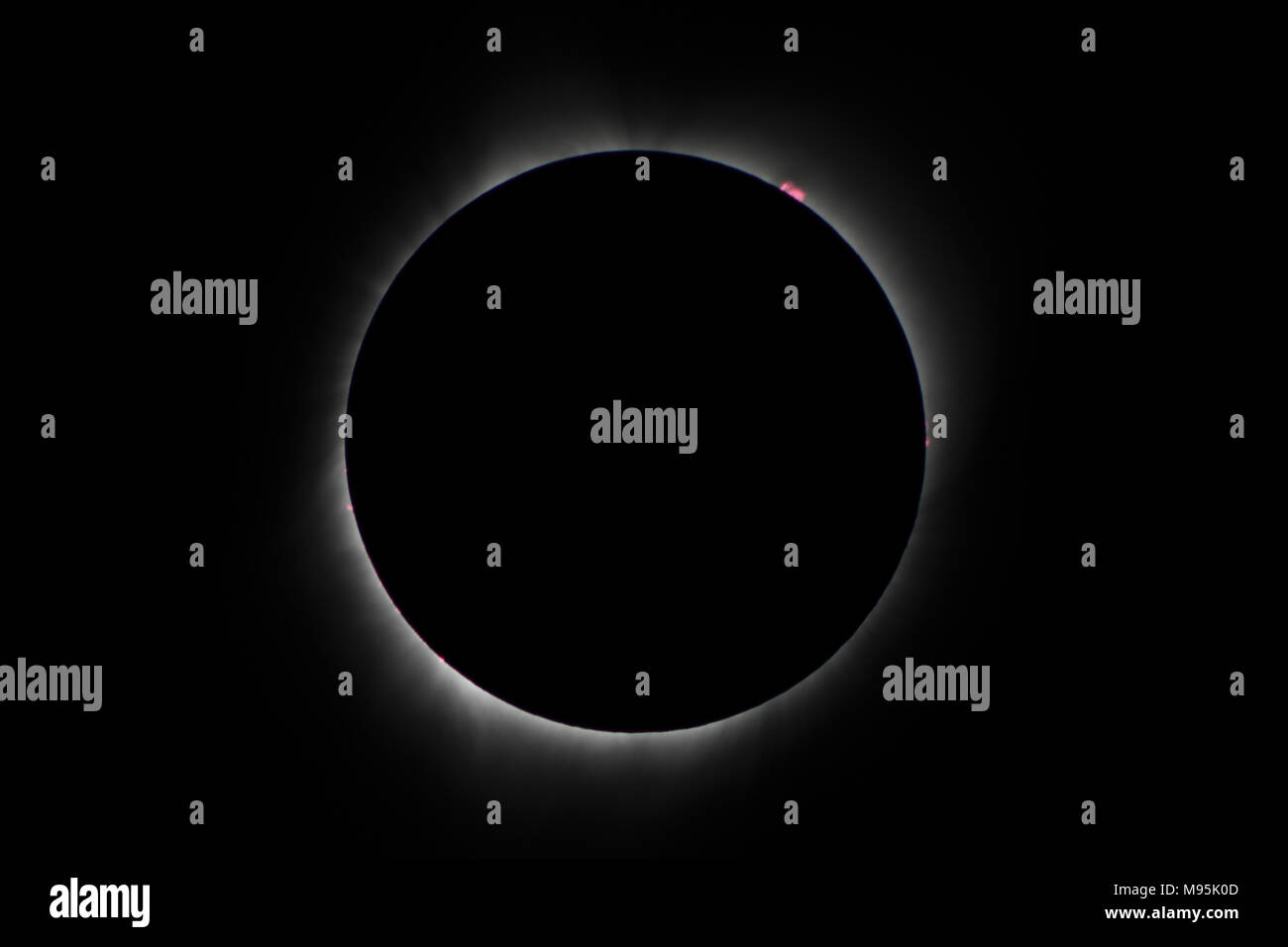 Phases of total solar eclipse - Stock Image