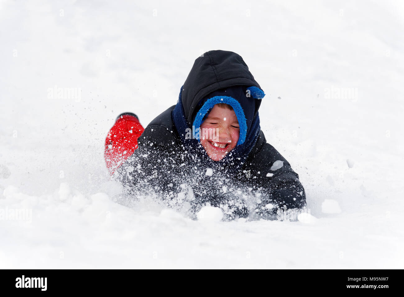 A little boy (5 yr old) grimacing as snow goes into his face as he slides face first in the snow - Stock Image