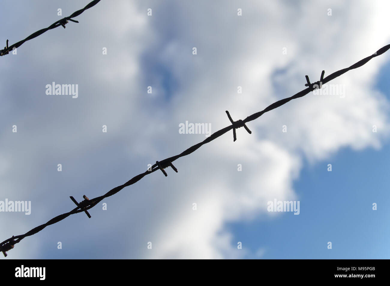 Two rows of barbed wire cross in front of a beautiful blue and cloudy sky on a summer day - Stock Image