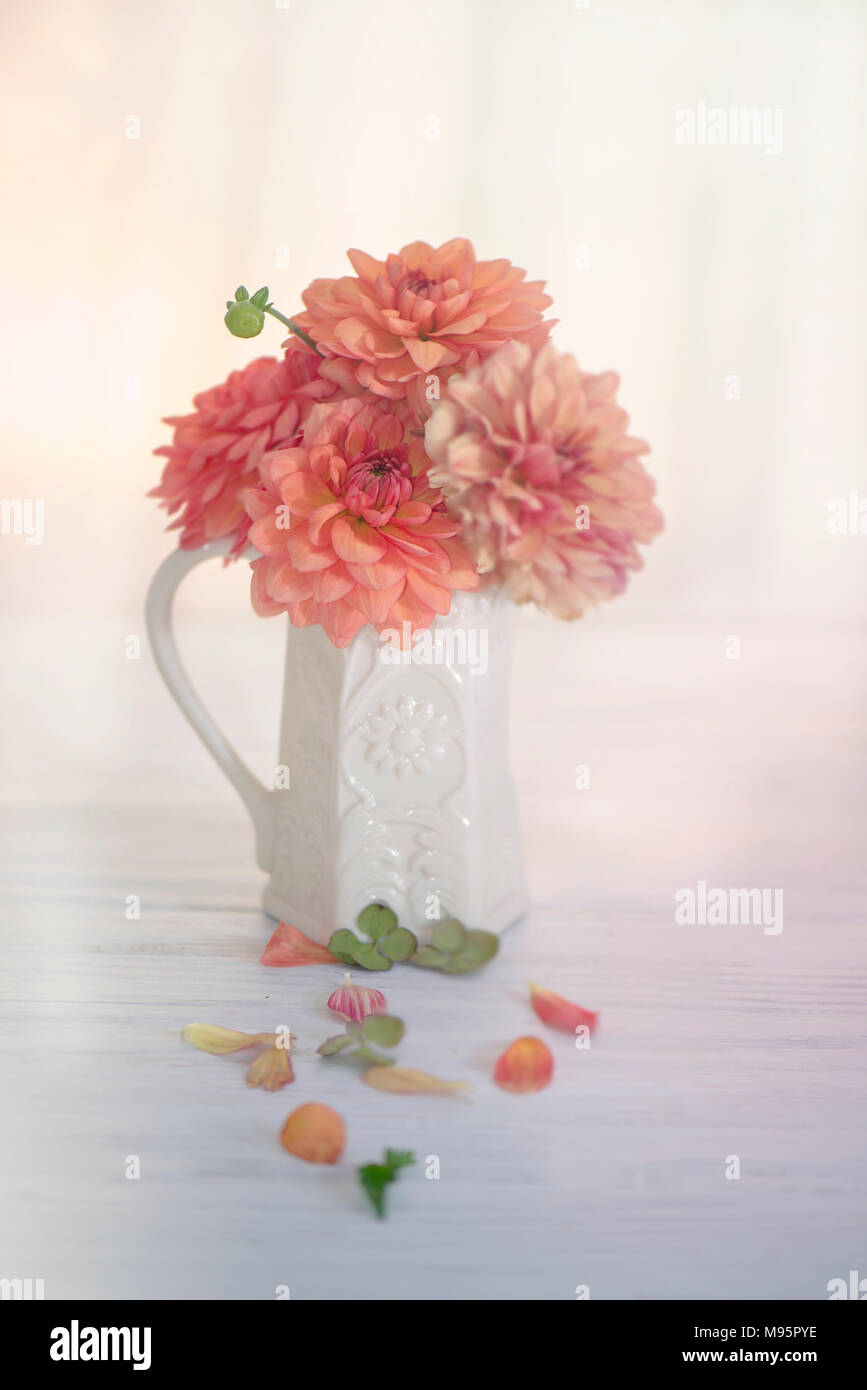 Peach Colored Flowers Stock Photos & Peach Colored Flowers Stock ...