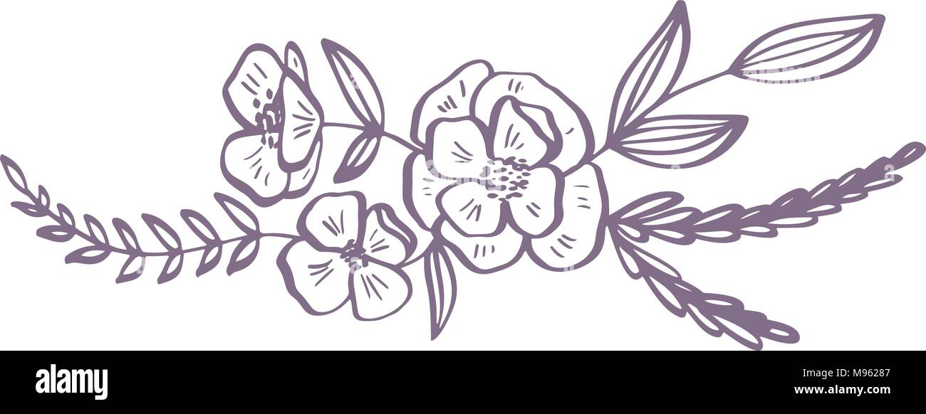 modern flowers drawing and sketch floral with line,art