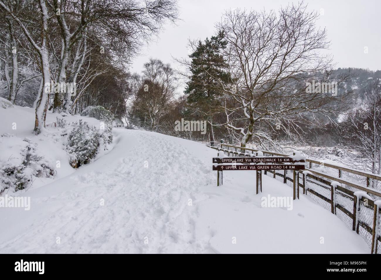 Winter in Glendalough - Ireland - Stock Image