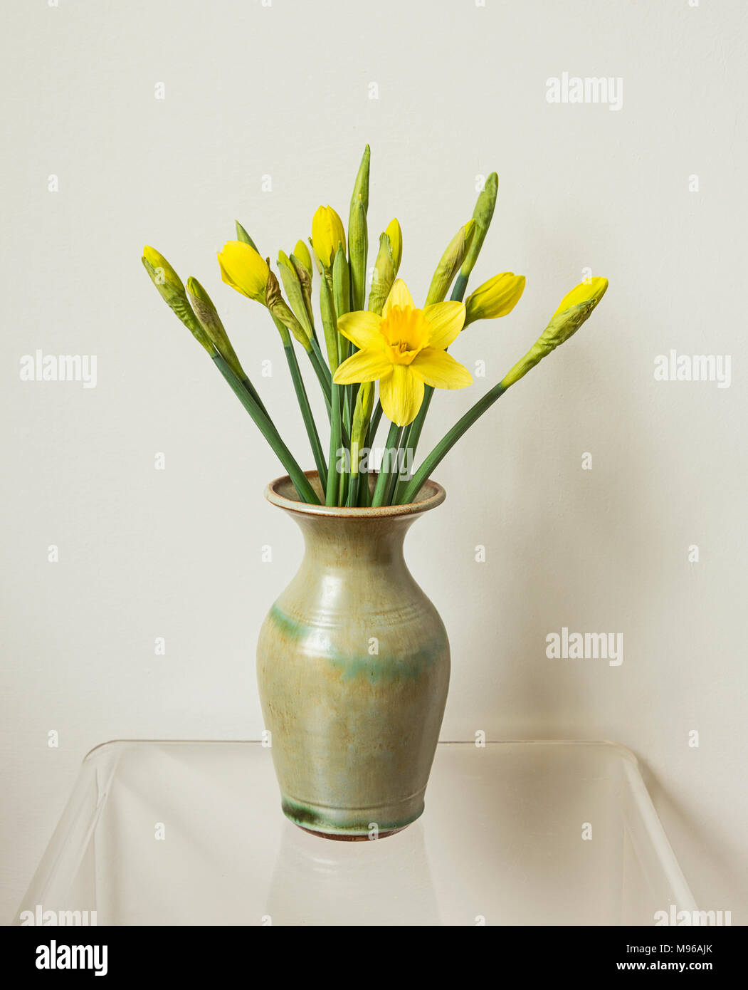 Daffodils in a green vase - Stock Image