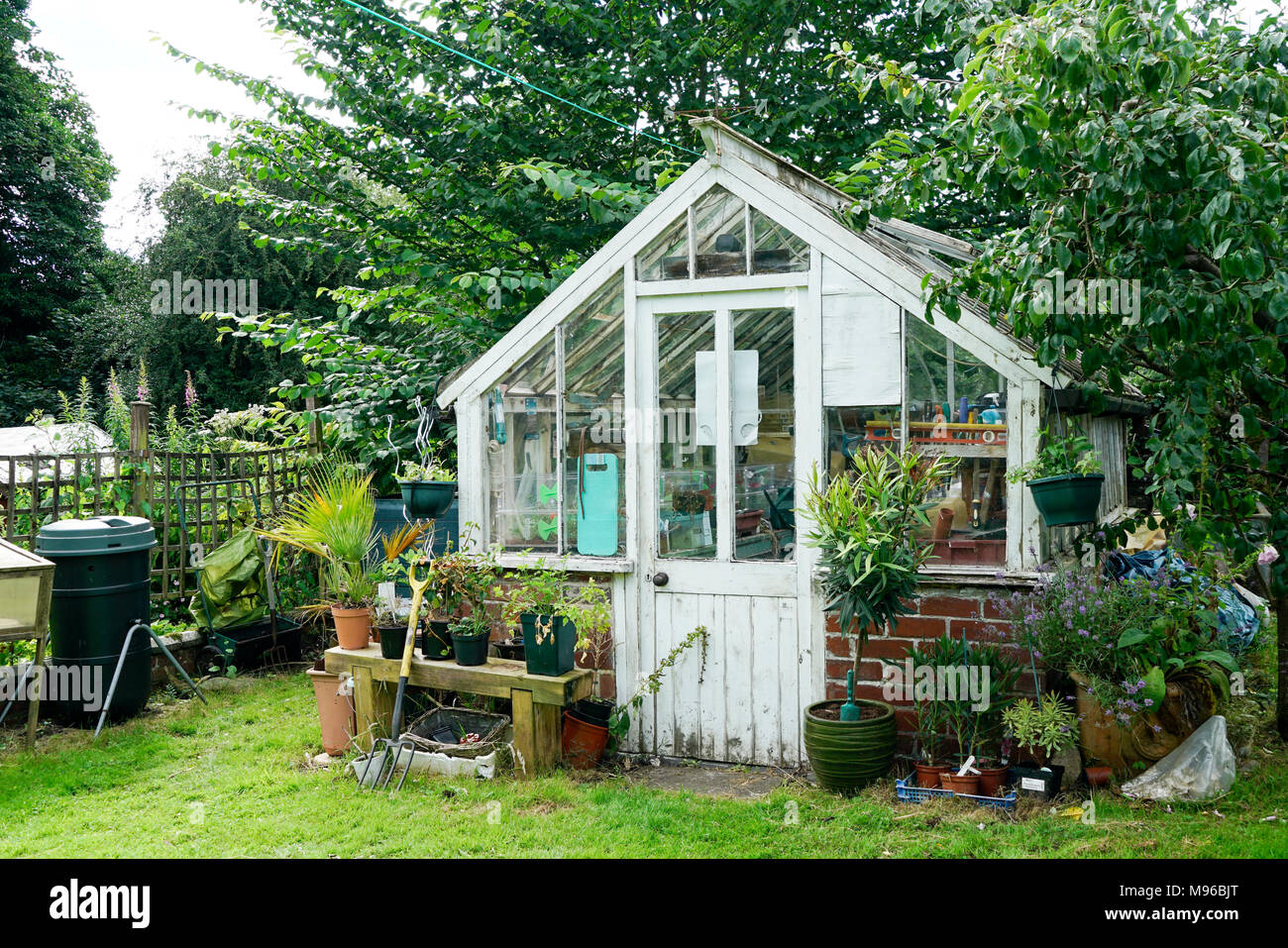 glass and wooden greenhouse in English country garden - Stock Image