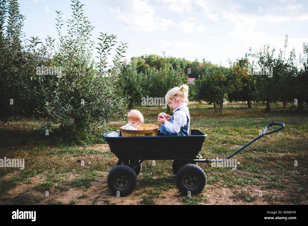 Girl and baby sitting in orchard wagon - Stock Image