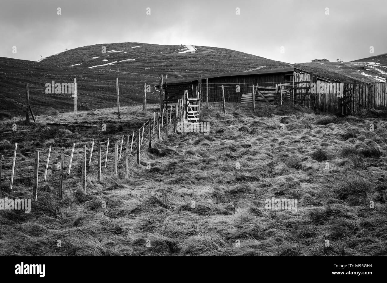 Reindeer Paddock and Shelter on the slopes of the Cairngorm Mountain in the Scottish Highlands - Stock Image