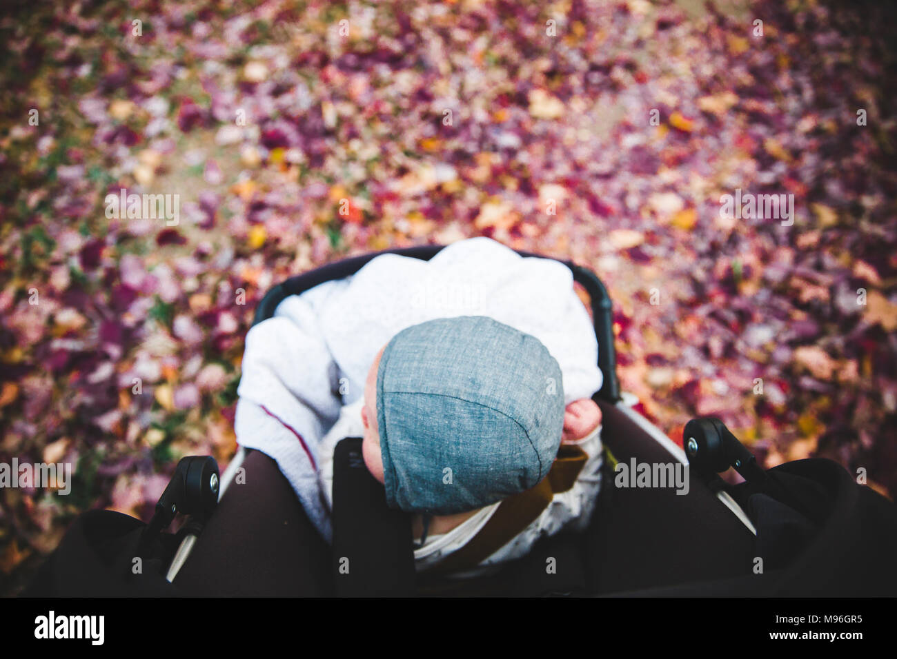 Baby sitting in stroller around leaves - Stock Image