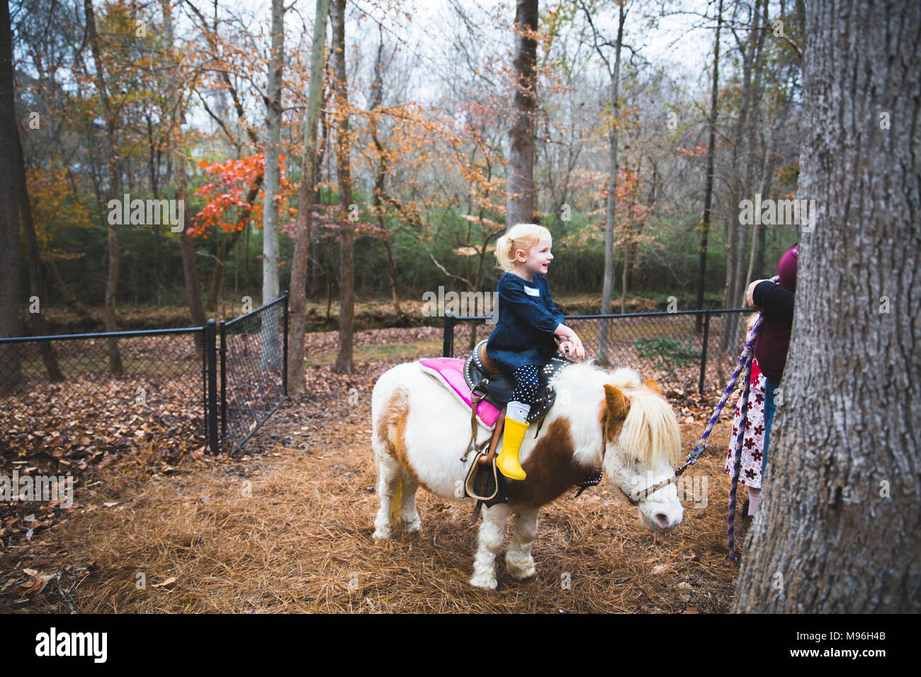 Girl being guided in the woods whilst on pony - Stock Image